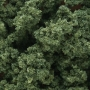 Bushes- Medium Green (Bag)
