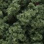 Bushes- Medium Green (Shaker)