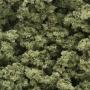 Bushes- Olive Green (Bag)