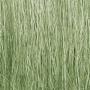 Field Grass-Light Green