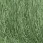 Field Grass-Medium Green