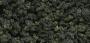 Underbrush- Forest Blend (Shaker)