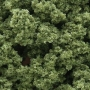 Underbrush- Light Green (Bag)